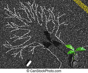 concetto, asfalto, germoglio, albero, gesso, crescente, contorno, strada