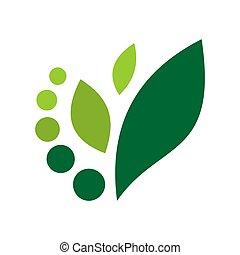 concetto, astratto, vettore, foglia, natura, icona, verde, logotipo
