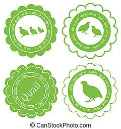 concetto, carne, francobollo, etichetta, fattoria, vettore, sfondo verde, quaglia