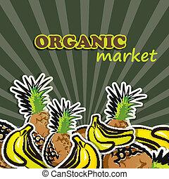 concetto, cibo organico, fruit., illustrazione, vettore