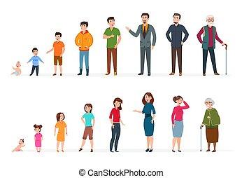 concetto, differente, bambini, persons., ages., persone, adolescenti, donna, anziano, giovane, bambino, vettore, adulto, umano, età, generazioni, uomo