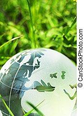 concetto, ecologia
