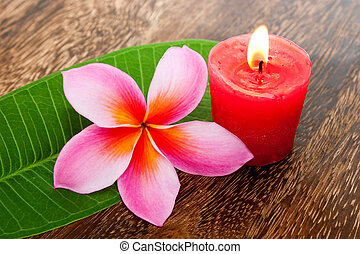 concetto, foglia, wellness, tropicale, aromatherapy, verde, plumeria, candela, terme