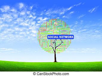 concetto, parola, forma, affari, albero, isolato, fondo, sociale, nube bianca, rete
