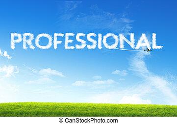 concetto, professionale, nuvola, affari