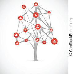 concetto, rete