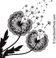 concetto, vettore, illustrazione, dandelion.