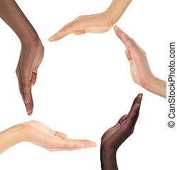 concettuale, simbolo, di, multirazziale, mani umane, facendo cerchio
