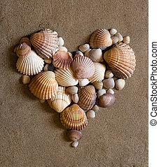 concha, coração, ligado, areia