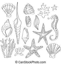conchas, desenhado, jogo, mar, mão