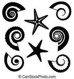 conchas, y, estrellas de mar, siluetas, conjunto