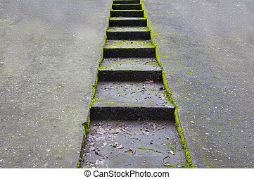 Green moss encrusted concrete driveway with sunken stairway