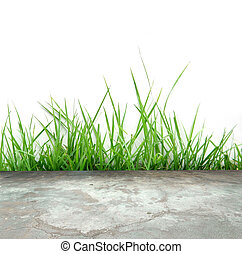 concrete flor with green grass