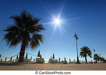 Concrete path with palms on beach with folded umbrellas and sunbeds, burning sun and cloudless sky