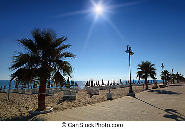 Concrete path with palms on empty sandy beach with folded umbrellas and sunbeds, burning sun and cloudless sky