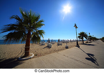 Concrete path with palms on sandy beach with folded umbrellas and sunbeds, burning sun and cloudless sky