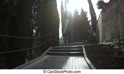 Concrete stairs in park