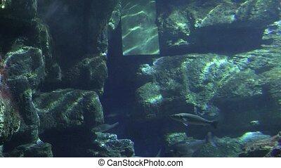 Concrete Underwater Structure