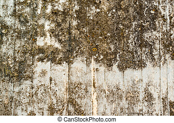 Concrete wall with lichen and moss