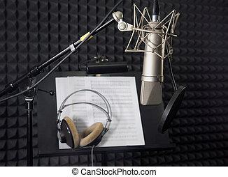 condensador, microfone, em, vocal, gravando, sala
