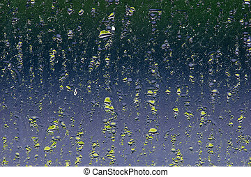 Condensation window abstract - Green coloured condensation ...