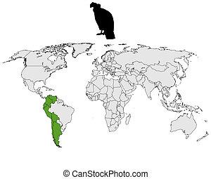 condor, distribution, andin