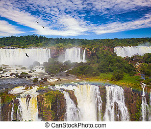 Andean condors fly in the water dust. Grandiose waterfalls Iguazu in South America, on the border of three countries: Brazil, Argentina and Paraguay. Concept of active and extreme tourism