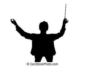 Conductor back from birds eye view - Silhouette of a music...