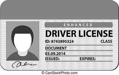 conductor, licencia