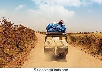 conduire, jeu, serengeti, safari, national, park., voitures