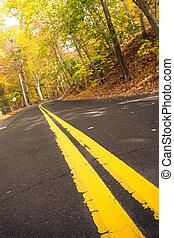 conduzir, outono