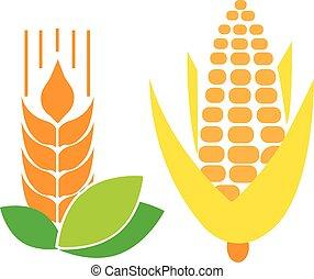 Cone, grain, wheat vector