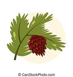 cone., isolé, pin, vecteur, illustration, branche, vert
