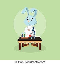 conejo, científico, delante de, tabla