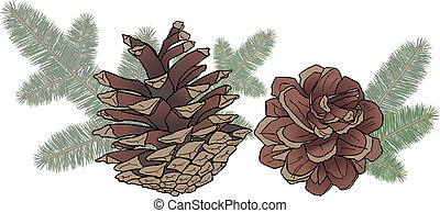 Cones and spruce branches-design elements for Christmas gifts and cards