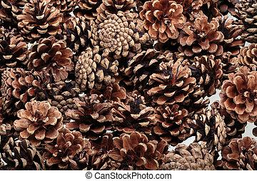 cones., fundo, natural, secado, pinho