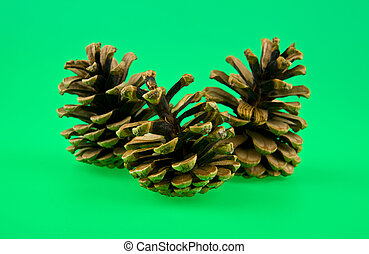 cones on a green background
