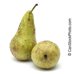Conference pears isolated on white background