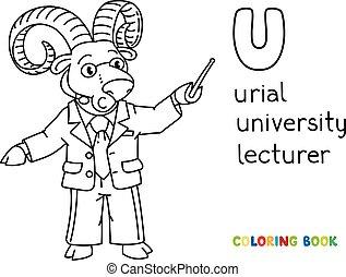 conferenciante, o, universidad, abc, colorido, urial, libro...