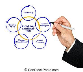 confiabilidad, excelencia, (rx)