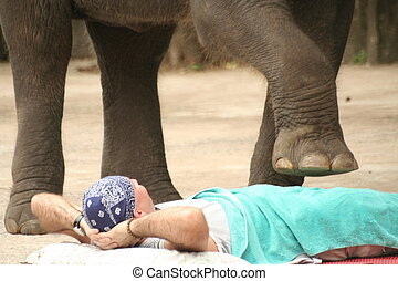 confidence - a man gets stepped on by an elephant