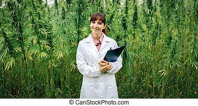 Confident doctor posing in a hemp field - Confident female...