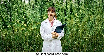 Confident doctor posing in a hemp field - Confident female...