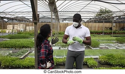 Confident latina woman and afro man wearing protective face masks talking at plant nursery. High quality FullHD footageAfro-american man and latina woman farm workers wearing disposable masks talking about growing plants at greenhouse