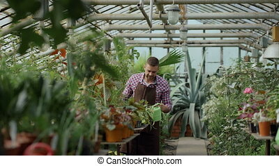 Confident male gardener watering plants at greenhouse with pot. Attractive young man enjoy his job in garden