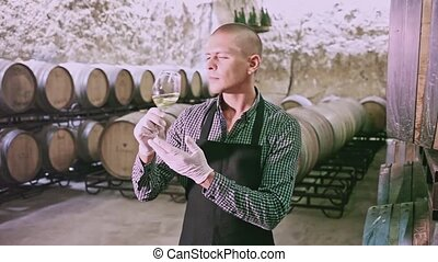 Confident winemaker inspecting quality of white wine, standing in front of wooden barrels in winery cellar. High quality FullHD footage