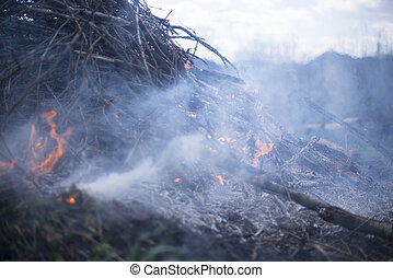 Conflagration - Fire in the field, spring cleaning
