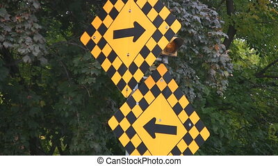 Confusing road sign. - Sign on street corner with opposing...