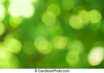 confuso, fondo verde, bokeh, efecto