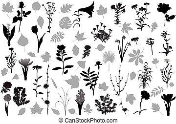 congé, silhouettes, fleurs, 66